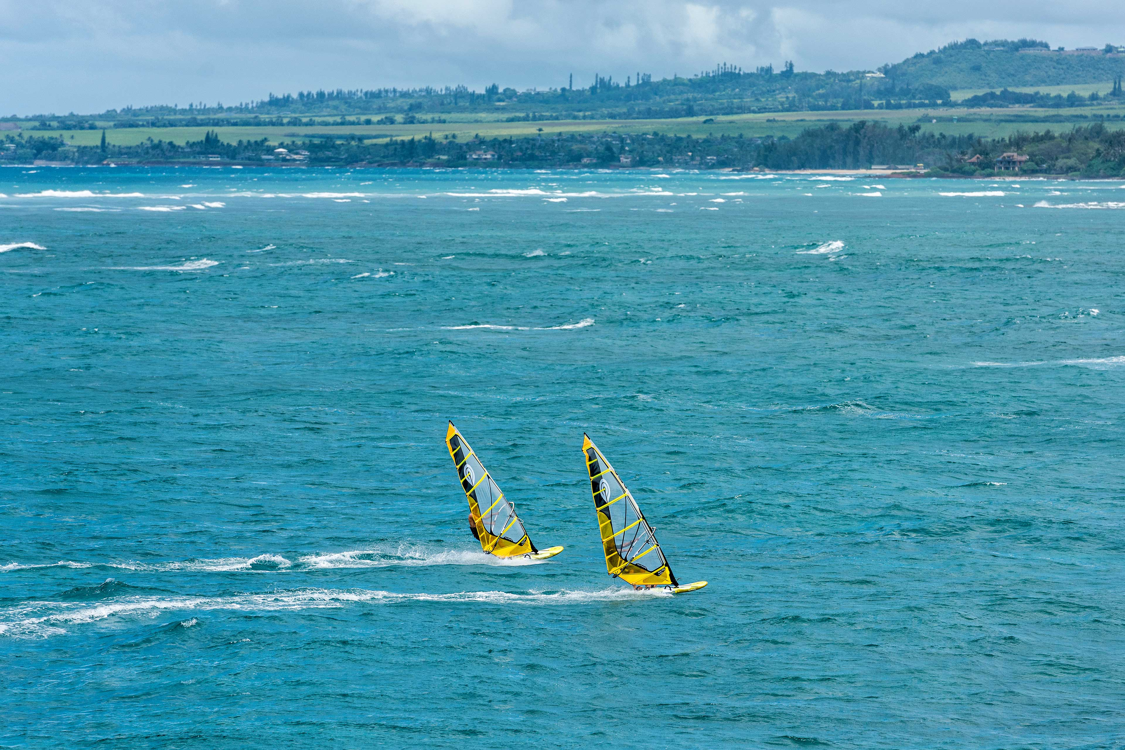 Goya Windsurfing - Sails - Mark 2 Pro